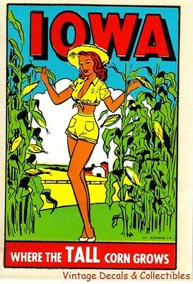 VINTAGE IOWA PIN UP GIRLIE RISQUE SOUVENIR STATE TRAVEL WATER DECAL DONMAR 1950s