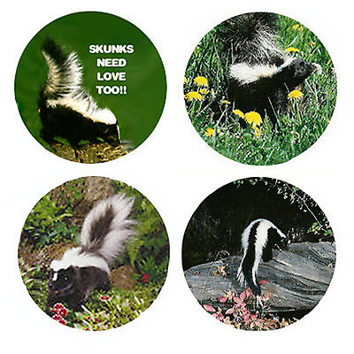 Skunk  Magnets:  4 So Sweet Skunks for your Fridge or Collection-A Great Gift