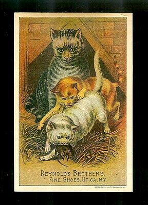Three Beautiful Cats-Colorful 1880s Victorian Trade Card-Shoes