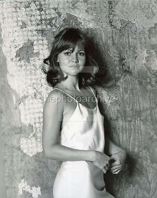 Sally Field 8x10 to 24x36 Photo Poster Canvas Wall Adhesive by LANGDON HL34