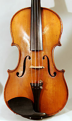 Good french violin Marquis Del'Air, oilvarnish