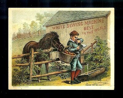 Pony Takes An Apple From Boy's Basket-Victorian Trade Card-White Sewing Machines