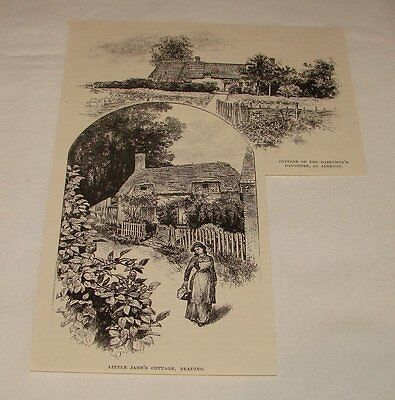 1893 magazine engraving ~ VARIOUS COTTAGES OF ISLE OF WIGHT