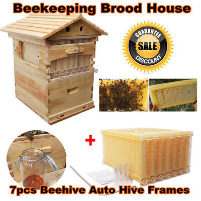 7pcs Beehive Auto Hive Frames Honey + Beekeeping Brood House Box US Ship