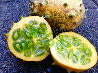 AFRICAN HORNED CUCUMBER 30+ seeds KIWANO jelly melon vegetable garden TROPICAL