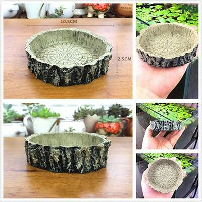 Reptile Tortoise Resin Water Dishes Food Bowl For Amphibians Gecko Snake Lizard