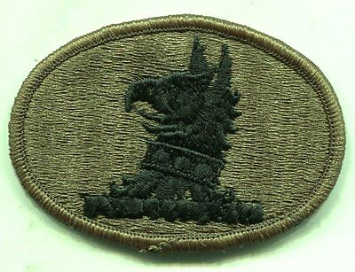 Vintage US Army DELAWARE National Guard OD Subdued Patch