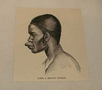 1887 magazine engraving ~ LORY, A MITTOO WOMAN