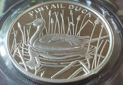 Pintail Duck one troy ounce .999 fine silver encapsulated