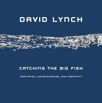 Catching the Big Fish Meditation, Consciousness and Creativity 9781585425402