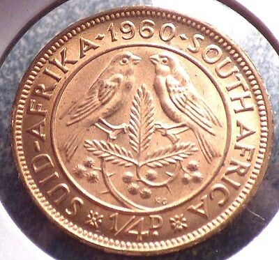South Africa 1/4 Penny, Farthing 1960, XF Coin w/ Cape Sparrows, Birds, KM 44