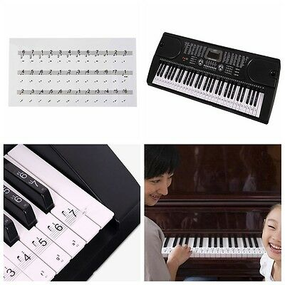 Durable Universal Transparent Piano 54/61/88 Key Note Keyboard Sticker