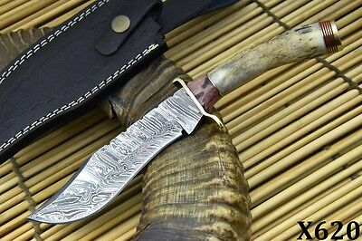 Custom Damascus Hunting Knife Handmade With Stag Horn Handle (X620)