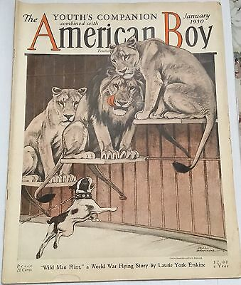 1930 American Boy Magazine ~ Boston Terrier dog & lions ~ Paul Bransom art