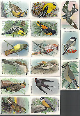 Useful Birds Of America Complete Series 10 Set By Arm And Hammer