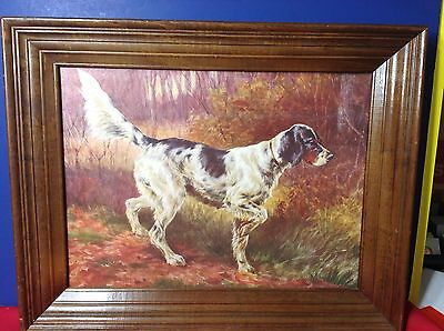 VINTAGE ENGLISH POINTER DOG PICTURE HUNTING POINTER Framed Artist Edmund ?