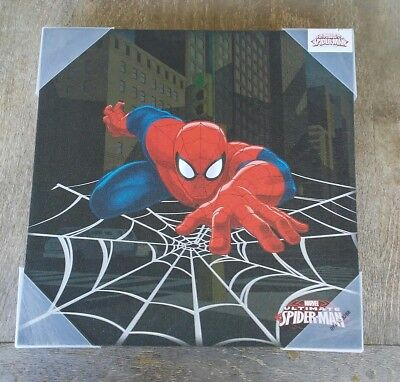 Spider-Man Web Crawler Canvas Print