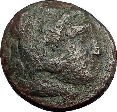 KASSANDER killer of Alexander the Great's FAMILY Ancient Greek Coin Horse i62735