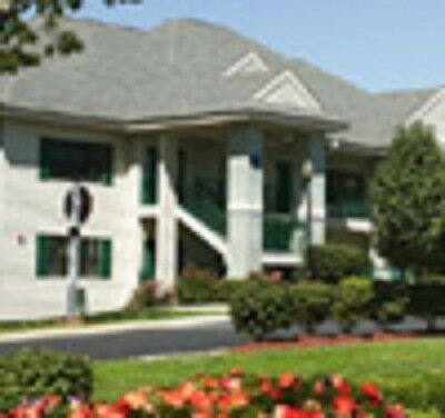 4 nt Branson, MO The Falls Village 1 BDRM Condo up to 4 people fall/winter dates
