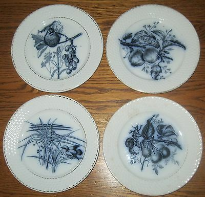 Royal Sphinx Plates Petrus Regout & Co Maastricht Four Old Pieces From Holland