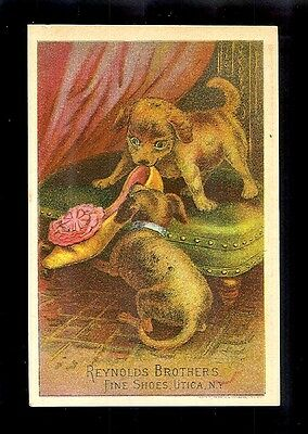 Puppies Chewing On A Shoe-1880s Victorian Trade Card-Shoes