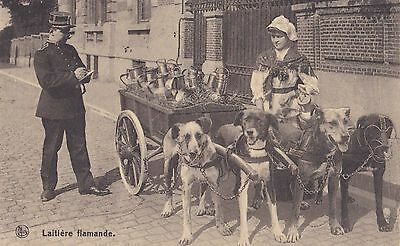 Good 1928 Belgium Picture Postcard Of A Dog Cart Posted To England 29*