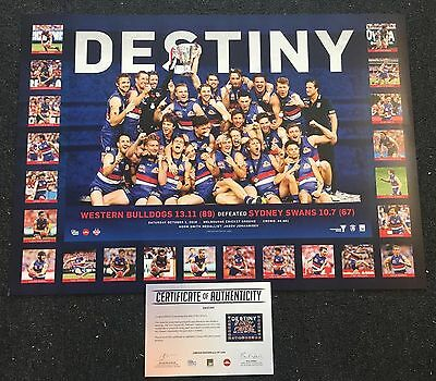 Western Bulldogs 2016 Afl Premiers Destiny Limited Edition Print Bontempelli