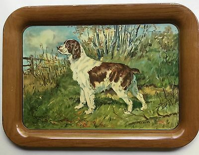 1940s A.C. Co Tin Litho Tray SPRINGER SPANIEL Hunting Dog by Ole Larsen 17 1/2""