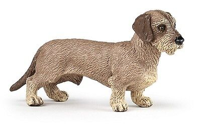 WIREHAIRED DACHSHUND DOG  54043 ~ NEW for 2017! FREE SHIP/USA w/ $25.+ Papo Item