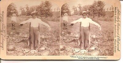 Antique Black Americana Stereoview Young Boy with Scarecrow