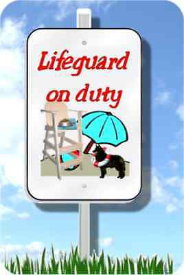 "Belgian Sheepdog lifeguard on duty sign novelty 8""x12"" metal pool yard dog"