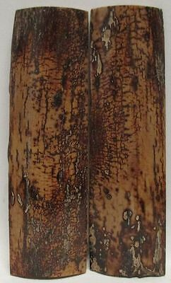 Fossil Bark Knife Scales 3-1/2 X 1 X 3/16