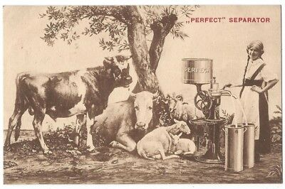 CATTLE/COWS Perfect Cream and Milk Separator, Old Postcard Unused