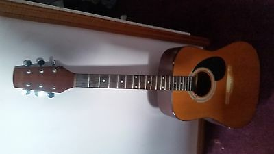 Prince Acoustic Guitar deep tone need repair, as in pictures,