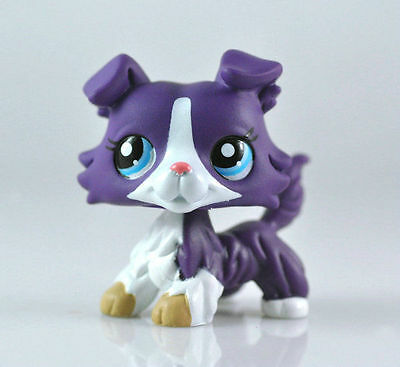 DOG COLLIE Littlest Pet Animal child girl boy figure loose cute LPS845