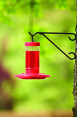 Bird Feeder - First Nature Hummingbird  Birdfeeder  16oz