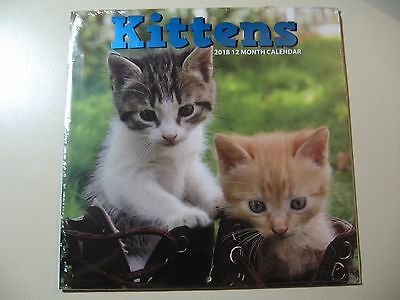 Kittens (2018, 12 Month Wall Calendar) Brand New and Sealed