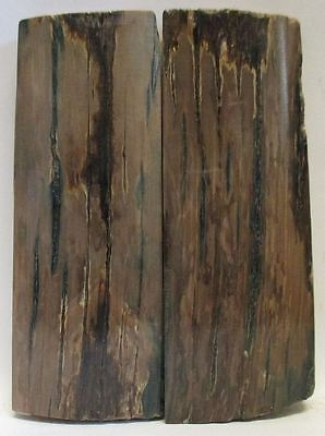 FOSSIL BARK KNIFE SCALES  3-3/8 to 3-1/2 X 1-1/4 to 1-5/16 X 1/4