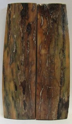 Fossil Bark Knife Scales  3-1/2 X 1 X 5/32