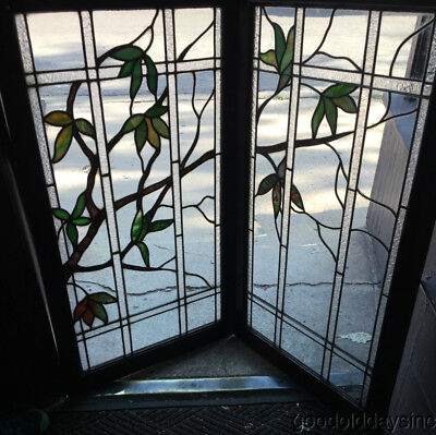 2 Antique Leaded Glass Leaf Vine Tree Stained Glass Windows Circa 1910