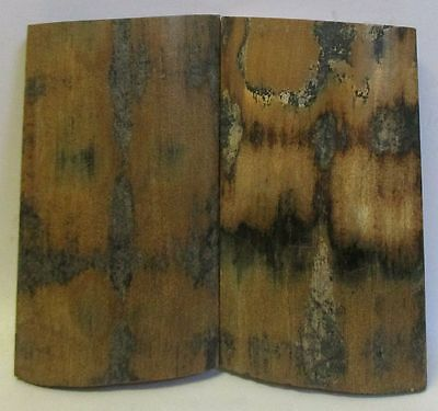 FOSSIL BARK KNIFE SCALES 3 x 1-5/8 to 1-11/16 x 7/32 to 1/4