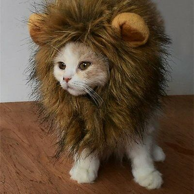 New Lion Mane Wig For Pet Cat Halloween Party Costume Washable Comfortable Fancy