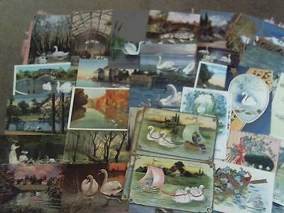 Lot Of 40 Postcards Most Pre 1930 All Have Swans On Them 10 Are Easter ;greeting