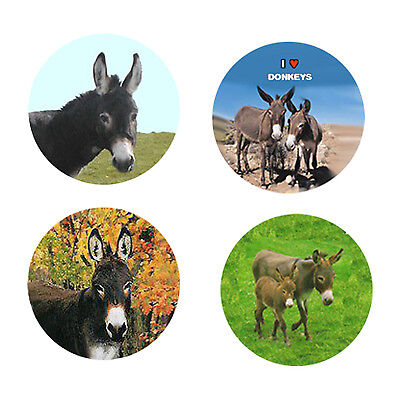 Donkey Magnets-A:   4 Dapper Donkeys for your Fridge or Collection-A Great Gift