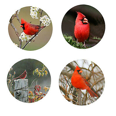 Cardinal Magnets-A    4 Cool Cardinals for your home or collection-A Great Gift