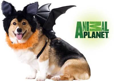 Pet Animal Planet Bat Licensed Pet Costume