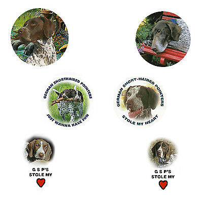 German Shorthaired Pointer Magnets: 6 Cool GSPs for your Collection-A Great Gift