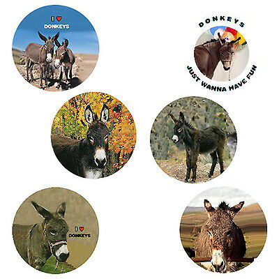 Donkey Magnets: 6 Dapper Donkeys for your Fridge or Collection - A Great Gift