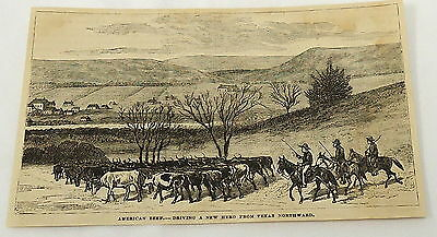1881 magazine engraving ~ CATTLE HERDERS drive new herd northward from TEXAS