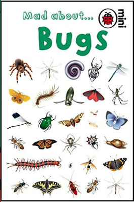 Mad About Bugs (Mini)  Book New